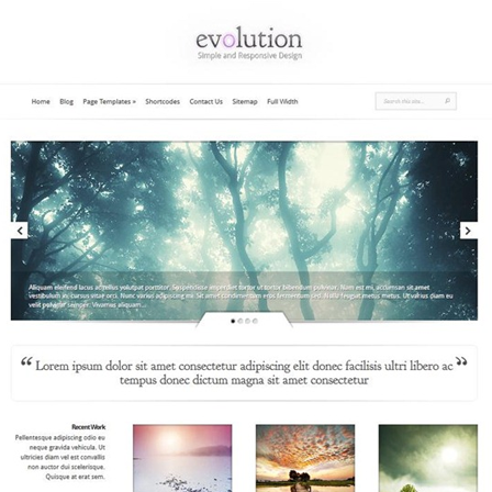 WordPress Theme03