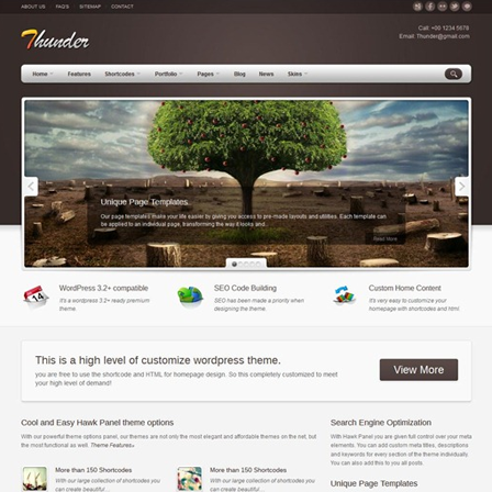 WordPress Theme06