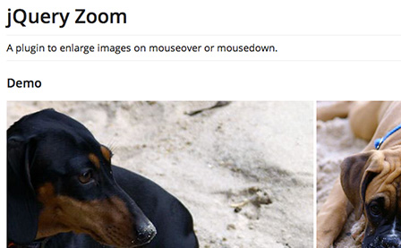jQuery Zoom