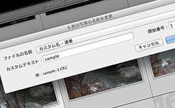 Lightroomで写真のファイル名を一括変更するやり方