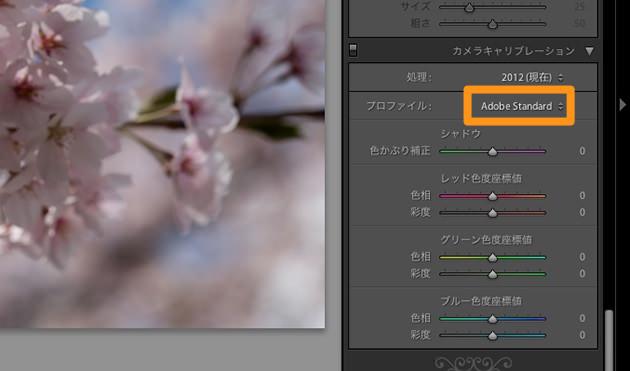 カメラキャリブレーションのプロファイル