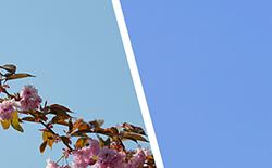 Photoshopの「特定色域の選択」