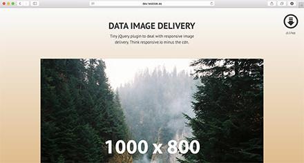 Data Img