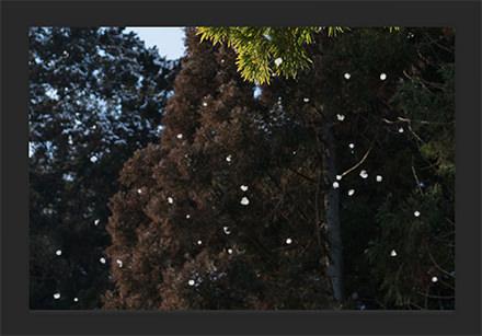 画像に雪を描く