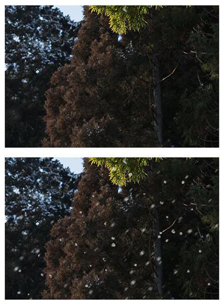 最初の画像と比較
