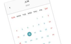 PIGNOSE Calendar
