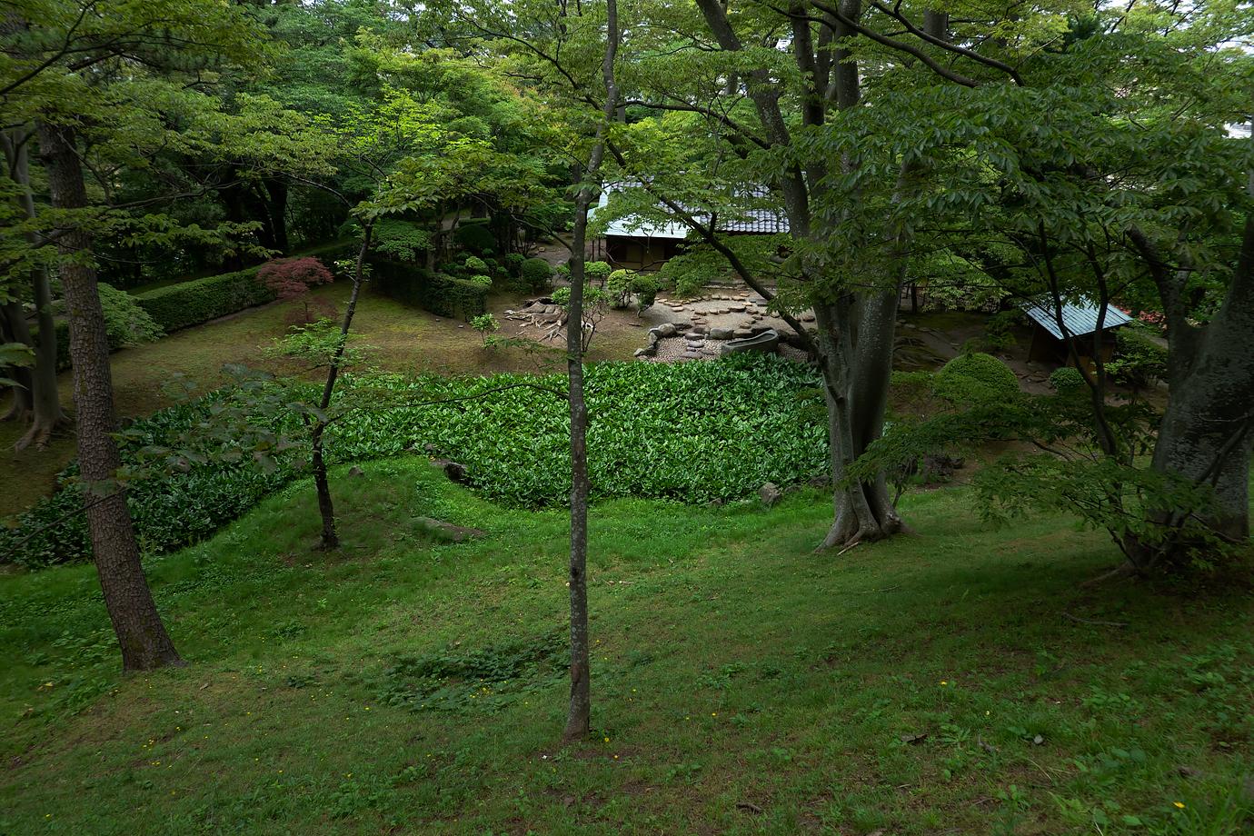 千秋公園の一角