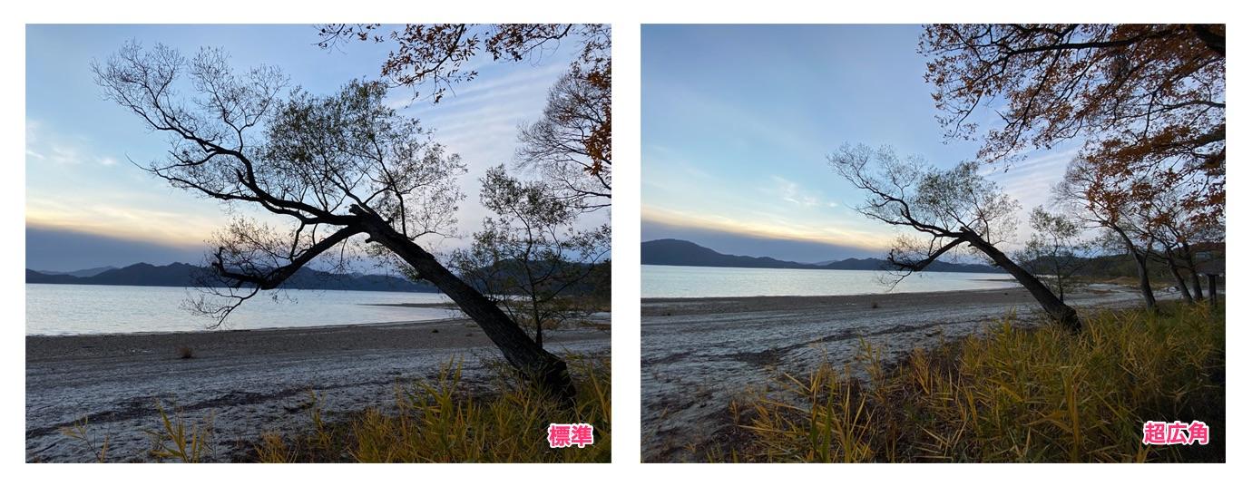 iPhone 11 Proの標準レンズと超広角レンズの比較