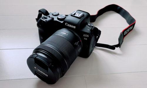 EOS R6とRF24-105mm F4-7.1 IS STM